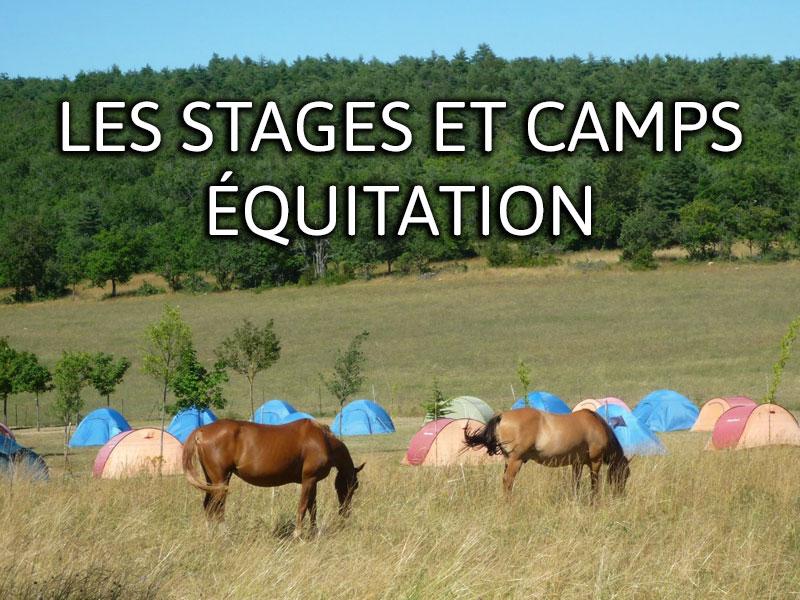 accueil-equitation.jpg